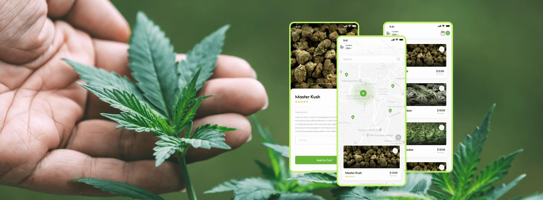Everything you should know about Online Cannabis Delivery in the US