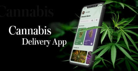 How to develop a cannabis delivery app that stands out
